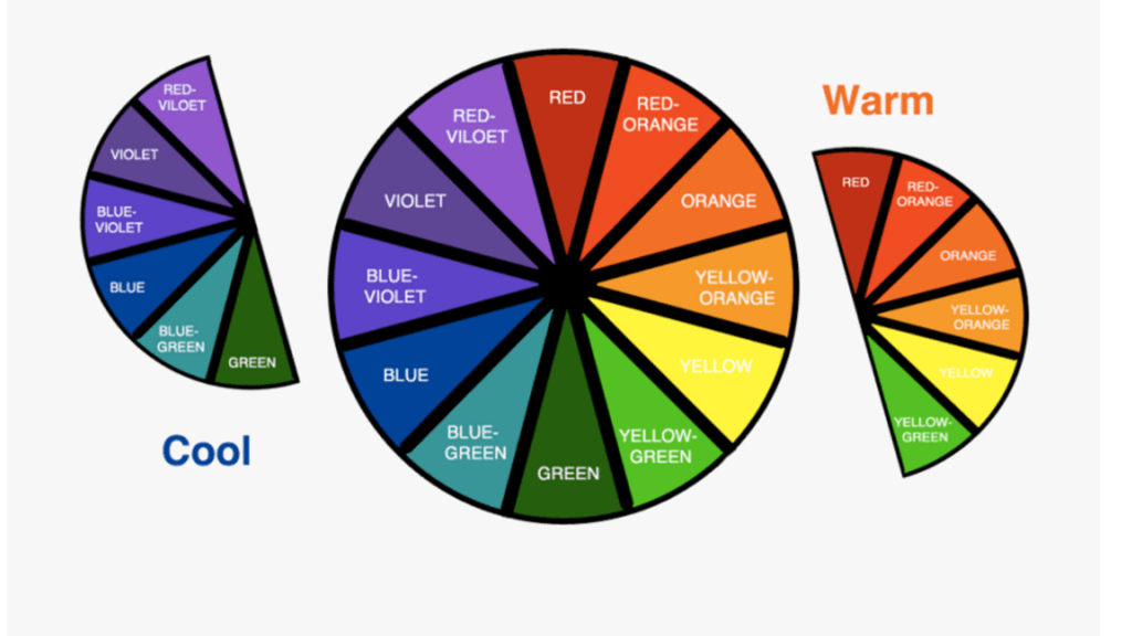 Cultured Curves Color Wheel Matching